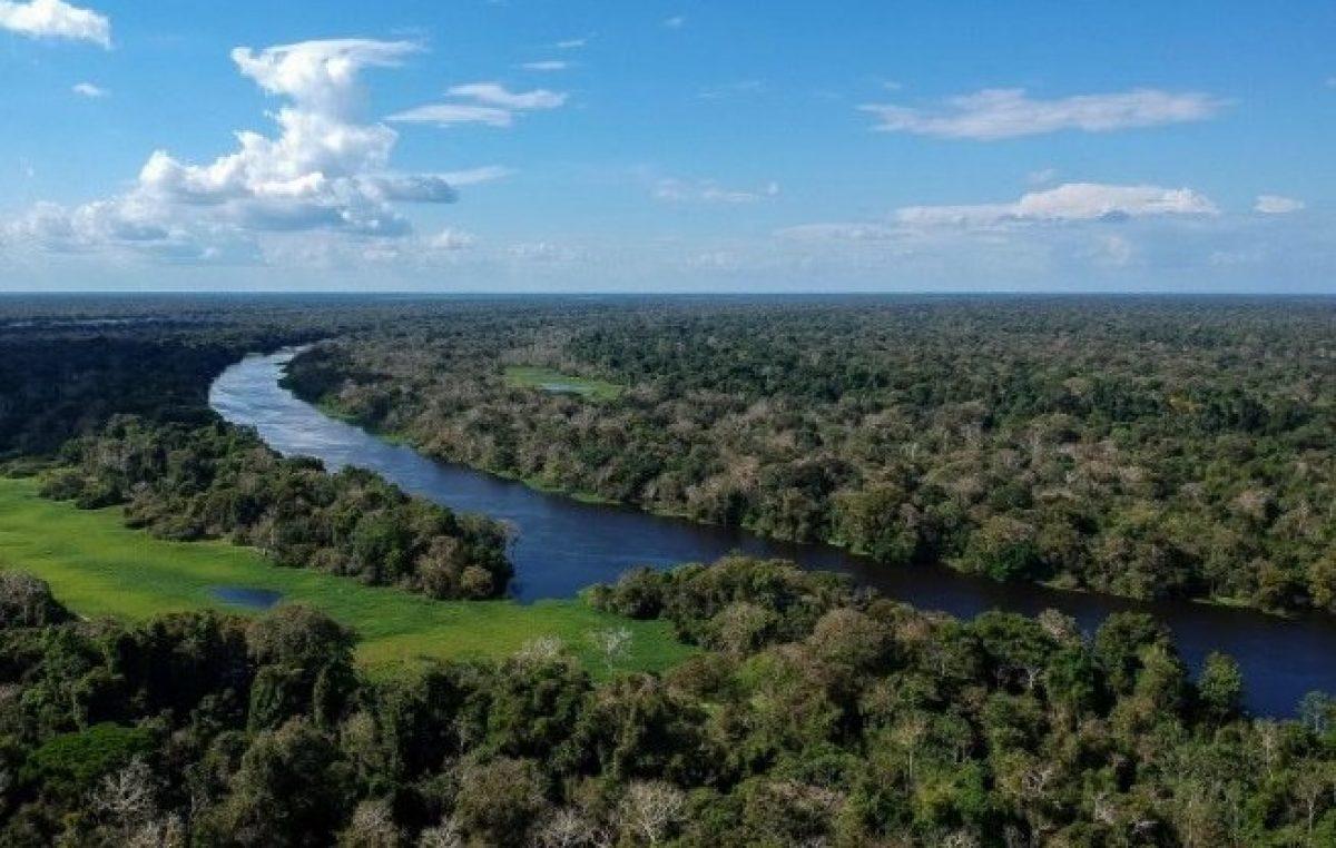De 25 a 27/02, acontece no Vaticano seminário em vista do Sínodo para a Pan-Amazônia