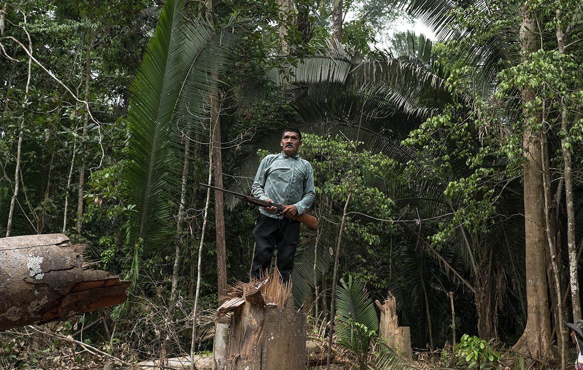 Cimi denuncia invasões de madeireiros e ameaças de posseiros a terras indígenas