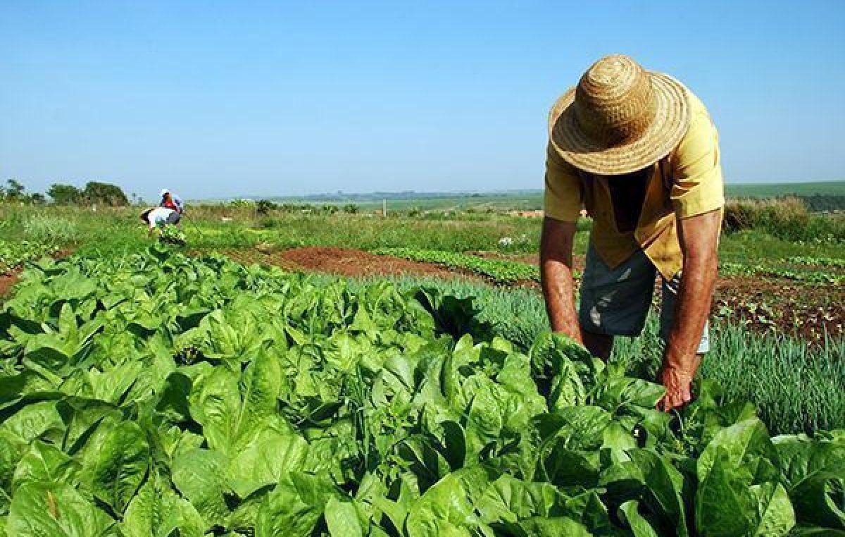 Comissão Pastoral da Terra divulga balanço da questão agrária no Brasil no ano de 2018